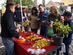 Riegrova 51 nabízí Trh U vrby či kurzy pro veřejnost