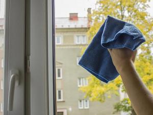 Jak dobře umýt okna? Andulka vám poradí!