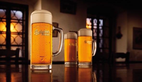 Budějovický Budvar letos zvyšuje prodej piva