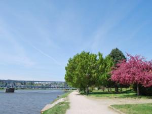 V Týně začala dlouho očekávaná rekonstrukce plovárny