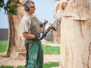 Při dřevosochařské show vyrábí pohádkové bytosti