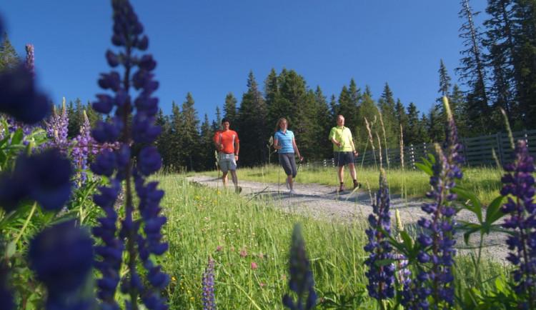 Na Hornoplánsku bylo otevřeno šest okruhů pro Nordic Walking