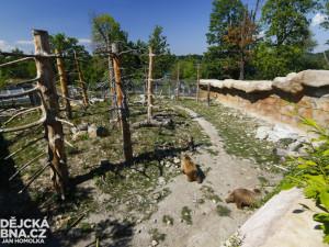Zoo v Hluboké nad Vltavou loni navštívilo více než 250 tisíc lidí
