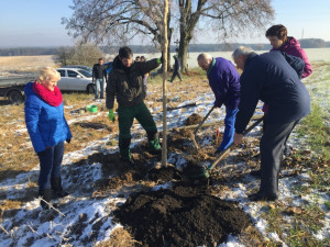 Netěchovice obnovují původní krajinu