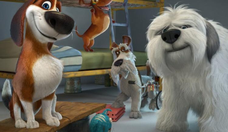 FILMOVÉ PREMIÉRY: Ozzy přichází do kin! War Pigs ale nezazpívá... Je to totiž přátelský bígl