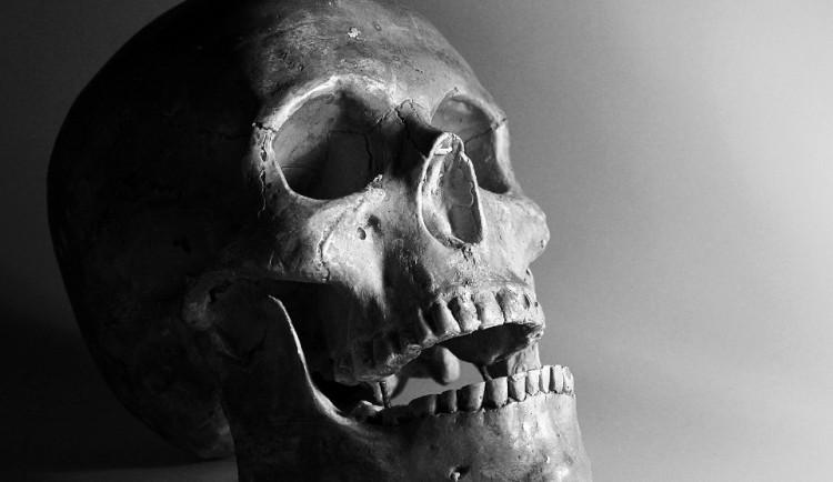 DRBNA VĚDÁTORKA: Homo sapiens je o sto tisíc let starší než se myslelo