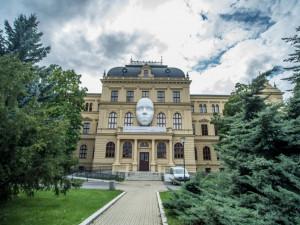 Vltava žije! Jak vypadá zážitkový okruh audiovizuálních představení festivalu?