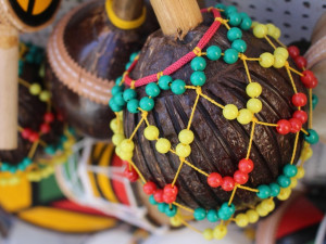 KULTURNÍ TIPY: Masopustní veselí vrcholí, tradice pak vystřídají brazilské rytmy a Malina Brothers