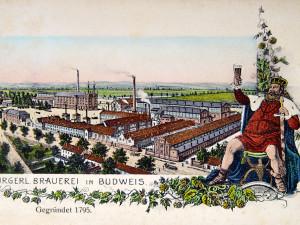 MĚSTO PŘED STO: Pivovarnictví má v Budějcích dlouholetou tradici