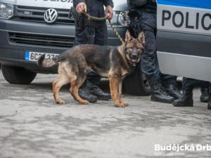 Policisté na Strakonicku vypátrali během několika hodin dva pohřešované