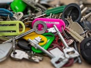 Lidé nejčastěji ztrácí klíče, kola a telefony. Ale mezi nálezy už byly i andulka či model zubů