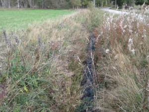Šumavský Želnavský smyk a dosud nepřístupná část Schwarzenberského kanálu budou opraveny