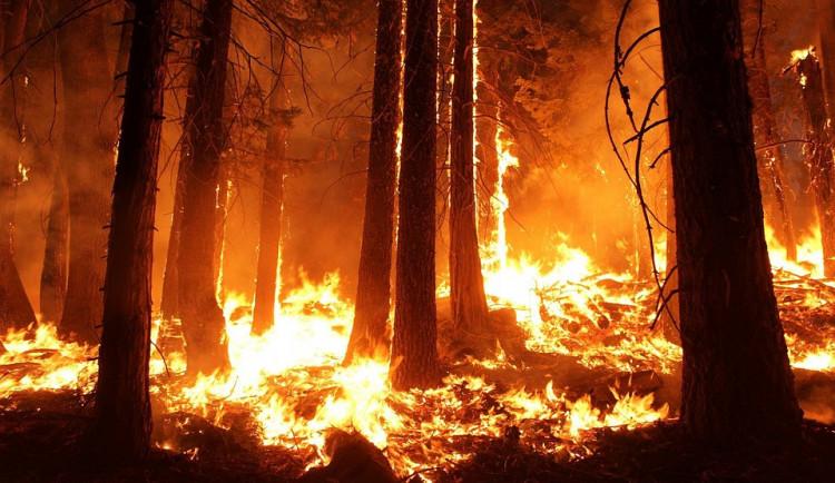 Vlna veder zasáhla také jižní Čechy. Hasiči proto upozorňují na nebezpečí požárů