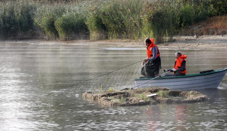 Na Lipně vymřeli síhové, chladnomilné ryby vyžadující čistou vodu