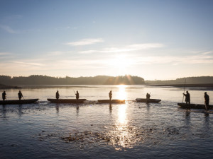Jižní Čechy čekají tradiční výlovy rybníků a několik gastronomických akcí