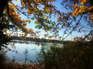 FOTO: Babí léto očima čtenářů. Slunečný podzim láká k výletům i lenošení na slunci