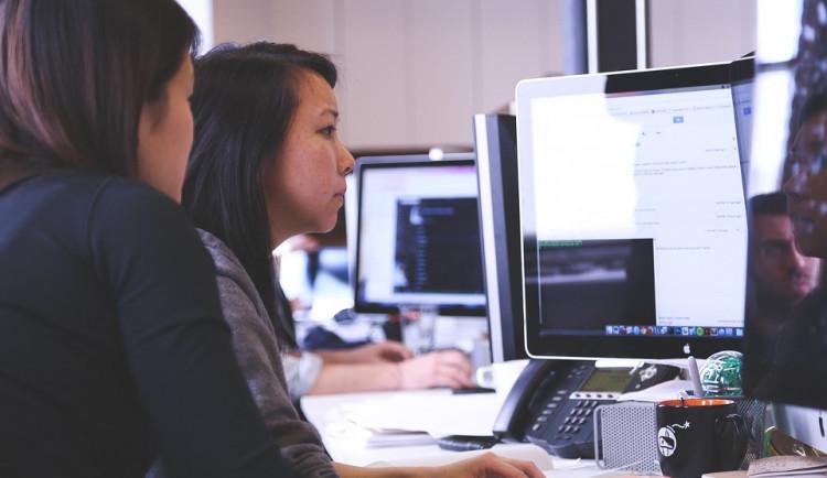 Jihočeským žákům pomohou při volbě školy online testy