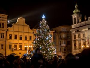 Na náměstí se konečně rozsvítí vánoční stromeček. Obhájí loňské vítězství?