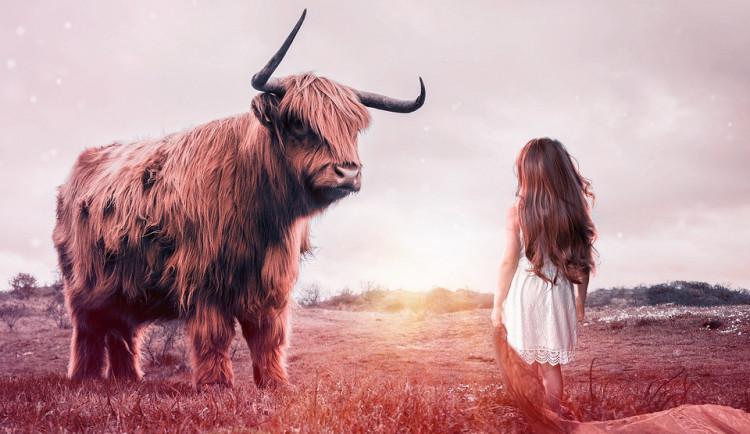 Přes čtyřicet procent dětí nikdy nevidělo dojení krávy, nejvíce jich chce cestovat v čase