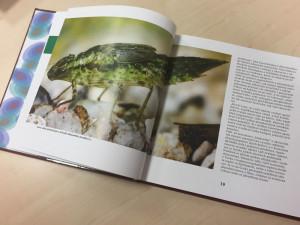 Povolání věděc: Jihočeská univerzita vydala knihu o dobrodružství přírodovědy