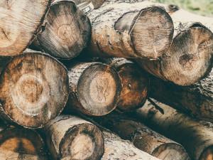 Neznámý zloděj ukradl dřevo za dvacet tisíc korun