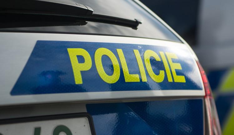 Zloděj utíkal před policií, hlídka střílela
