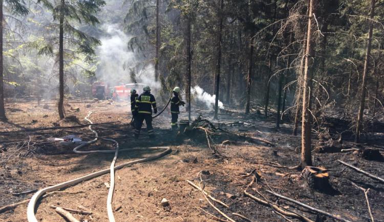 Hasiči včera zasahovali u devíti požárů lesa. Jde o extrémní číslo, říkají