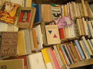 V Budějcích bude Noc literatury, číst se bude na netradičních místech