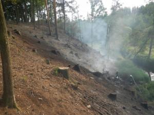 Jihočeský kraj potrápily tropické dny, nebezpečí požárů stále trvá