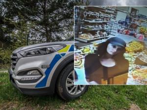 Po ženě na fotografii pátrají policisté. Může jim pomoct vyřešit případ