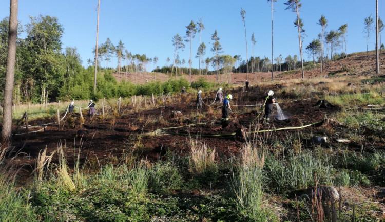 Na Jindřichohradecku hořela lesní školka. Hasiči varují před rozděláváním ohňů ve volné přírodě