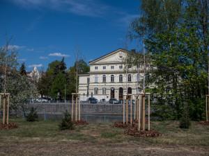 O zeleň ve městě se starají čtyři firmy. Údržba vyjde na více než 30 milionů korun