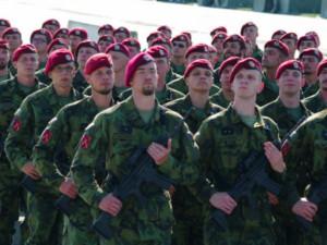 Budějce připravují po jedenácti letech vojenskou přehlídku