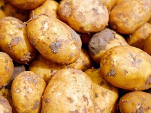 Cibule stojí dvojnásobek než loni, zdražil i květák a brambory
