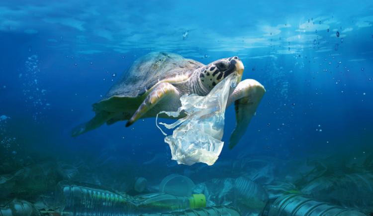 Festival Voda Moře Oceány: Zvítězí doba plastová?