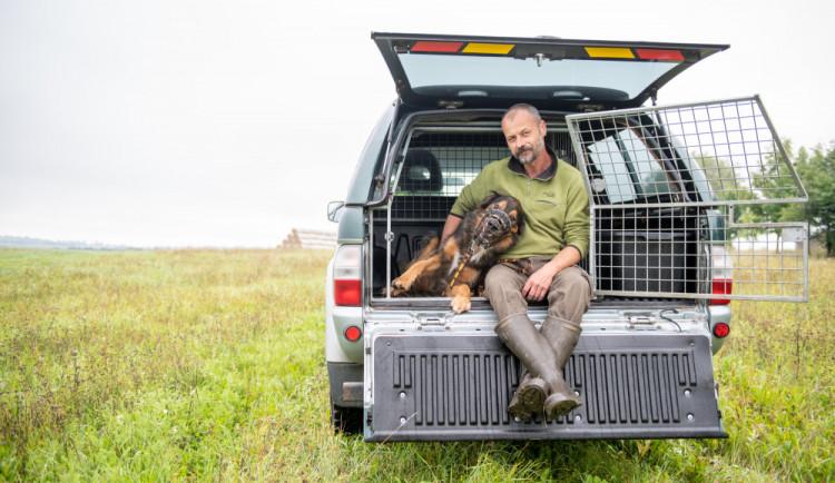 Psů je tolik, že nemají pro řadu lidí hodnotu, říká Vladimír Kössl z Animal Rescue