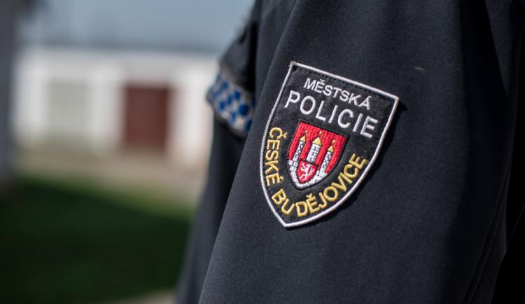 Strážníci z Lince přijedou do Budějc, řešit se bude bezpečnost v ulicích a problematika žebrání