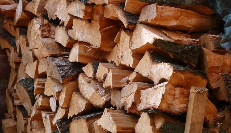 """""""Čoika"""" se opět zaměří na kontroly při nákupu palivového dřeva, loni rozdala 24 pokut"""