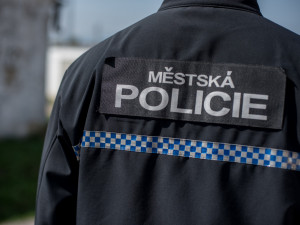 Lesní roh v centru Budějc a pánské obleky na Dlouhé louce, strážníci řešili kuriózní nálezy