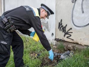 Strážníci letos sebrali přes tisíc použitých stříkaček. Víte co dělat, když infekční materiál najdete?