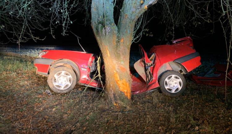 Osobák narazil na Písecku do stromu, řidič na místě zemřel