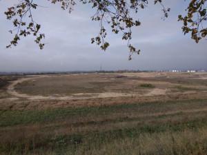 Z bývalého odkaliště na Srubci bude po skončení rekultivace lesopark