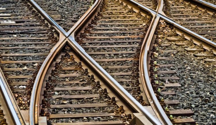 U Veselí nad Lužnicí se srazil vlak s kravami. Strojvedoucí je kvůli mlze neviděl