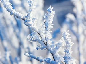 O Vánocích by letos podle meteorologů mohlo být chladno