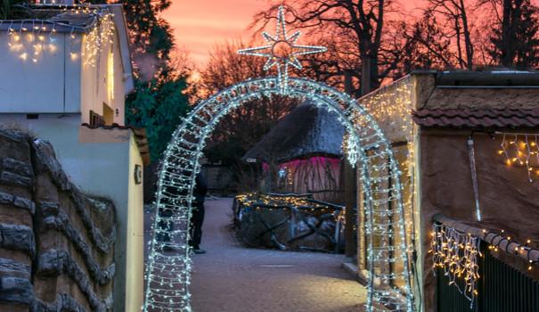 Vánočně nasvícená zoo v Hluboké letos přinese řadu novinek
