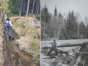 Vojenské lesy opraví Želnavský smyk na Šumavě, jímž plavily dřevo