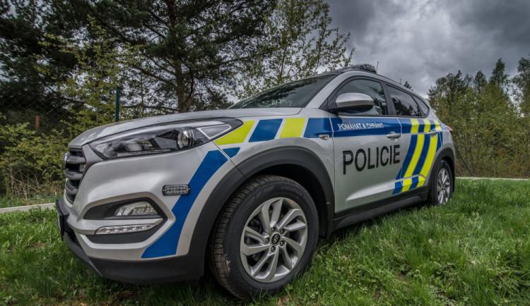 Řidič osobáku utekl před policisty do lesa, byl opilý