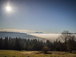 Soud odmítl žalobu Jihočeského kraje na ministerstvo životního prostředí a NP Šumava