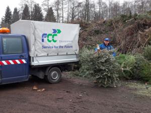 Dnes začíná svoz vánočních stromků