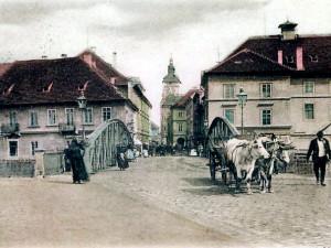 DRBNA HISTORIČKA: Domácí zvířata za první republiky